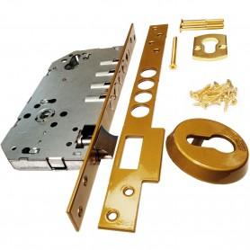 Cerradura Seguridad TESA R100B6SCE ( o R100B5SCE) ASSA ABLOY Serie 100, sin cilindro