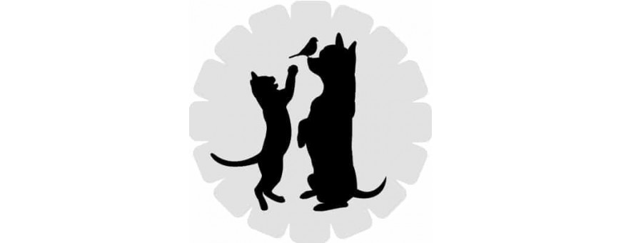 Complementos para Mascotas